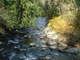 U řeky času