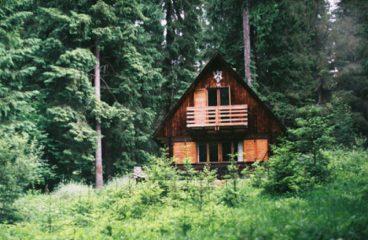Osvícení na samotě u lesa